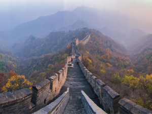 Surrogacy in China